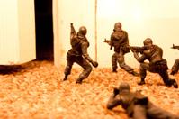 Terrorist Raid