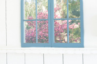 Pastel Spring Window