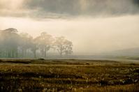 Foggy Gloucester morning