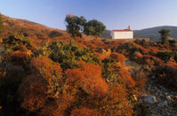 chapelle dans la nature en crete