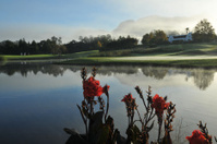 Golf lake View