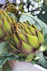 Fruits and Veggies - Artichoke