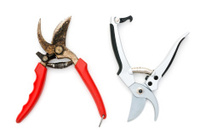old and new  pruning shears