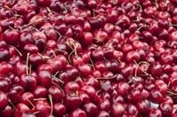 Fruits and Veggies - Cherry
