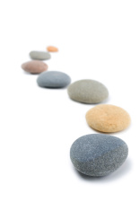 Stepping Stone Zen Snaking Curved Line of Stones