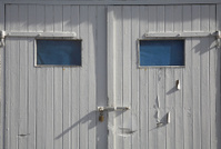 Blue eyed door looking like a human square face
