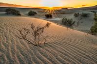 Morning sunburst over Death Valley Sand Dunes