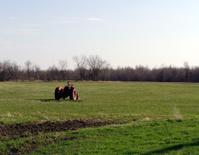 all alone in a field