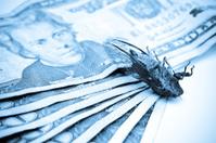 Money Bug Blues