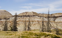 Unusual landscape of Horse-shoe Canyon