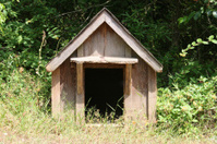 Dog House In Grass