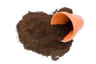 Pot and Soil