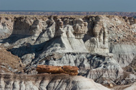 Petrified wood log and Painted Desert, Arizona