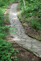 Stone Path Through Forest