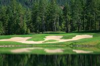 Golf Green Reflection