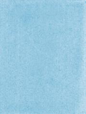 Blue Fiber Paper