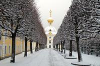 Winter's garden in Peterhof, St. Petersburg