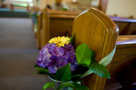 Bouquet of Wedding Flowers Decorates the Church Pews
