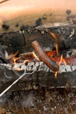 Campfire Hotdog 2