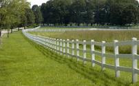 Fenceline and Shadows