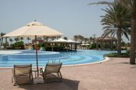 Swimmingpool unter Palmen