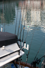 Ready to go fishing.