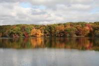 Fall foliage pond reflection