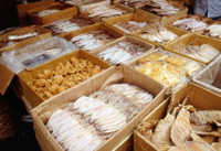 Fish offers in Thailand