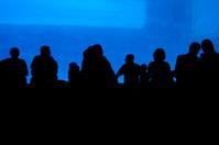 Spectators at Aquarium