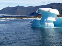 Boat excursion between icebergs