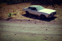 Abandoned Car Roadside