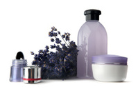 Cosmetics: Eyeshadow, Lavender, Moisturizer and Soap