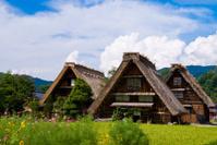 The world heritage Shirakawa-go.