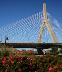 Zakim Bunker Hill Bridge