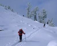 Backcountry Skiers