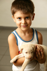 kid with his puppy