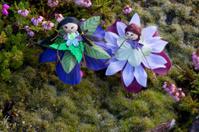 Moss fairies