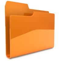 Orange business  folder