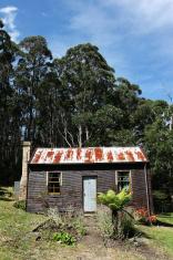 Tin Roof Home