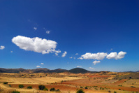 Spanish field
