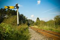 Train Signal