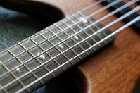 Bass Guitar Fretboard 7