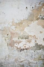 grundge (old wall)