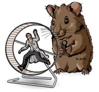 lab rat examins