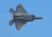 F22 Raptor Fighter Jet