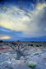 big sky over desert landscape