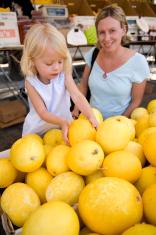 picking out a melon