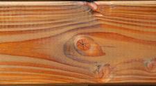 Wooden Vein