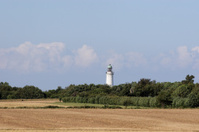Country landscape with lighthouse.
