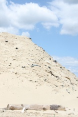 Sandpile with embedded trash